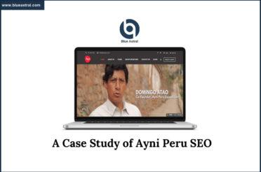 SEO Case Study Of Ayni Peru [PowerPoint Presentation]